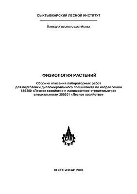 Головко Т.К., Табаленкова Г.Н. Физиология растений