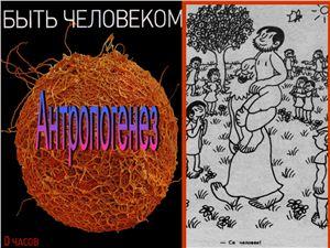 Презентация - Антропогенез