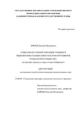 Брилев Д.В. Социальная самоорганизация учащихся общеобразовательных школ как фактор развития гражданского общества (на примере городского округа Город Хабаровск)