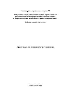 Шеметов В.А. Практикум по тензорному исчислению