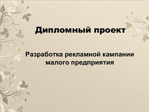 Разработка рекламной кампании малого предприятия (на примере салона-парикмахерской Локон)