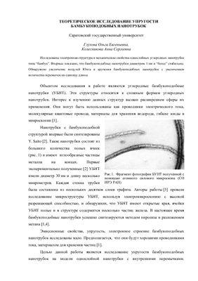 Глухова О.Е., Колесникова А.С. Теоретическое исследование упругости бамбукоподобных нанотрубок