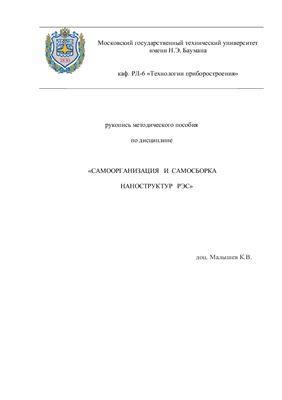 Малышев К.В. Самоорганизация и самосборка наноструктур РЭС
