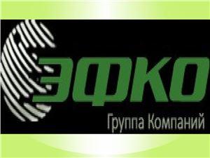 Губерниева Е.А. EFKO FOODS PLC