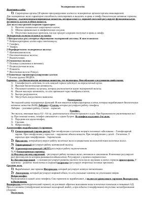 Реферат - Анатомия. Эндокринная система