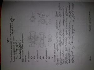 Миит решение задач по сопромату решение задач методом координат 11 класс егэ