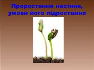 Проростання насіння, умови його підростання