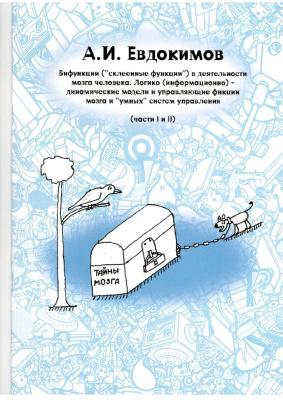 Евдокимов А.И. Бифункции (склеенные функции) в деятельности мозга человека. Логико (информационно) - динамические модели и управляющие функции мозга и умных систем управления
