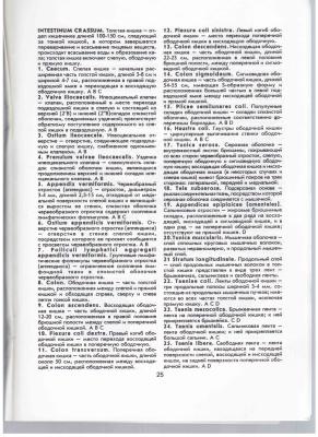 Гончаров Н.И. Пищеварительная система