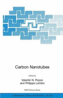 Popov V.N., Lambin P. (eds.) Carbon Nanotubes