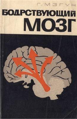 Мэгун Г. Бодрствующий мозг