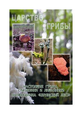 Евстигнеев О.И. Федотов Ю.П., Ситникова Е.Ф. Царство грибы: настоящие грибы, слизевики, лишайники заповедника Брянский лес