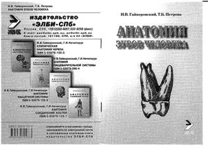 Гайворонский И.В., Петрова Т.Б. Анатомия зубов человека