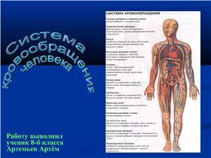 Презентация - Система кровообращения человека