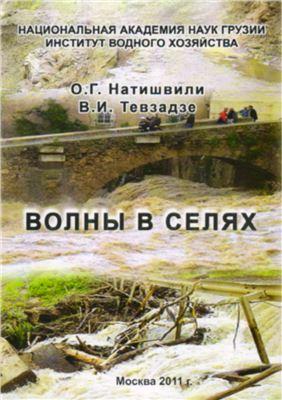 Натишвили О.Г., Тевзадзе В.И. Волны в селях