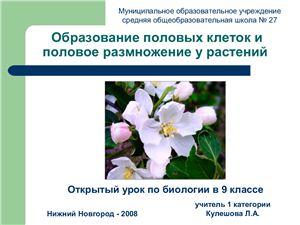 Половое размножение у растений
