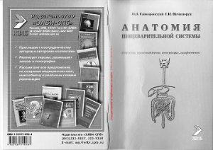 Гайворонский И.В., Ничипорук Г.И. Анатомия пищеварительной системы