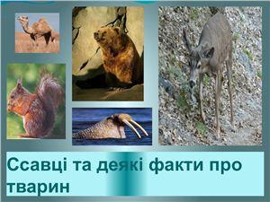 Презентация - Ссавці та деякі факти про тварин (Цікаві факти)