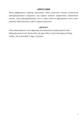 Курсовая работа - Особенности конструкций породоразрушающего инструмента при бурении наклонно направленных скважин
