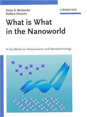 Victor E. Borisenko and Stefano Ossicini What is What in the Nanoworld