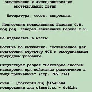 Баленко С.В., Серов Е.И. Обеспечение и функционирование экстремальных групп