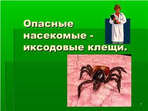 Опасные насекомые - иксодовые клещи