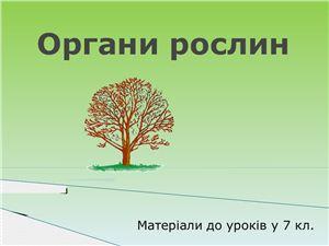 Органи рослин