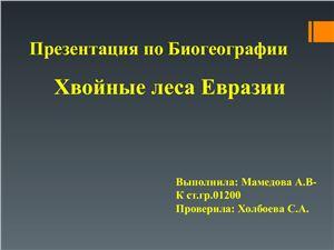 Хвойные леса Евразии