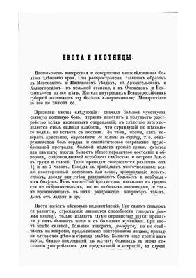 Ефименко П.С. Икота и икотицы