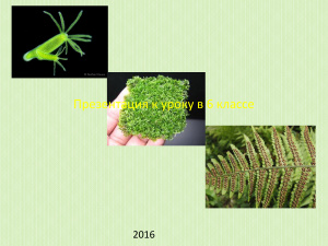 Размножение организмов и его значение
