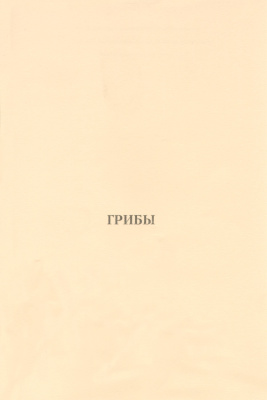 Янчук Т.М., Якубенко Н.В., Машанова О.Я. Грибы