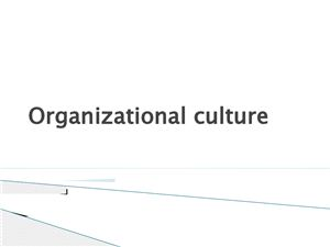 Corporate/Organizational Culture (корпоративная культура)
