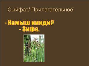 Татарова С.Ф. Сыйфат. Презентация  Прилагательное на татарском языке