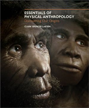Larsen C.S. Essentials of Physical Anthropology: Discovering Our Origins