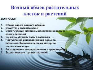 Водный обмен растительных клеток и растений