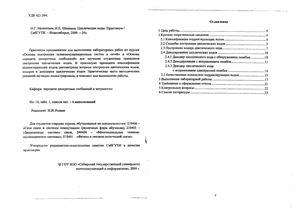 Мелентьев О.Г., Шевинина И.Е. Циклические коды