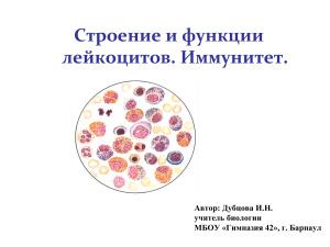 Строение и функции лейкоцитов. Иммунитет