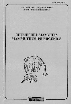 Кузьмина И.Е. Детеныши мамонта