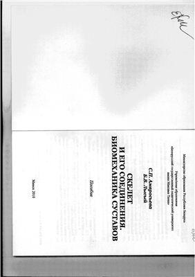 Амвросьева С.П., Лысый Б.В. Скелет и его соединения. Биомеханика суставов