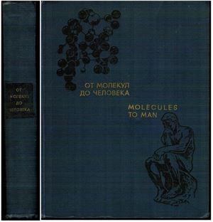 Бурдин К., Пархоменко И. (перев.) От молекул до человека
