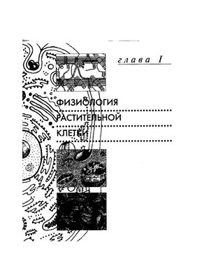 Якушкина Н.И. Физиология растений