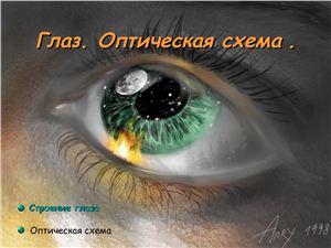 Глаз. Оптическая схема