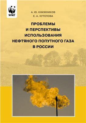 Книжников А.Ю., Кутепова Е.А. Проблемы и перспективы использования нефтяного попутного газа в России