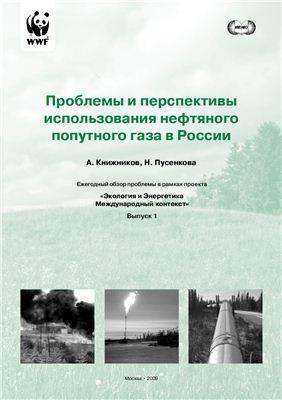 Книжников А.Ю., Пусенкова Н.Н. Проблемы и перспективы использования попутного нефтяного газа в России