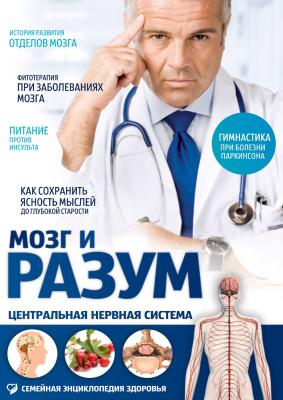 Пурисов Игорь. Мозг и разум. Центральная нервная система