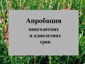 Апробация многолетних и однолетних трав