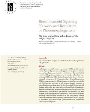 Zhi-Yong Wang, Ming-Yi Bai, Eunkyoo Oh, Jia-Ying Zhu. Brassinosteroid Signaling Network and Regulation of Photomorphogenesis
