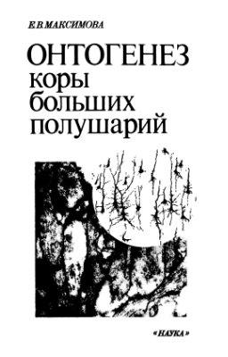 Максимова Е.В. Онтогенез коры больших полушарий