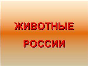Презентации - Животные России