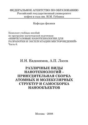 Евдокимов И.Н., Лосев А.П. Различные виды нанотехнологий - принудительная сборка атомных и молекулярных структур и самосборка нанообъектов